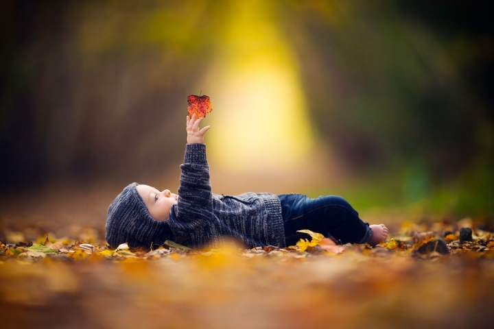 family photos of boy playing with fall leaves